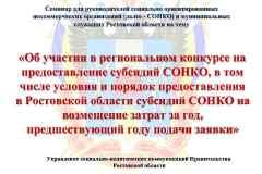 презентация-для-СОНКО_Page1