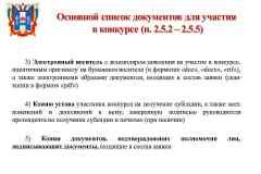 презентация-для-СОНКО_Page10