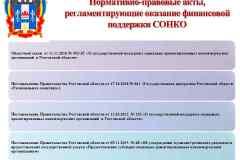 презентация-для-СОНКО_Page2