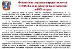 презентация-для-СОНКО_Page3