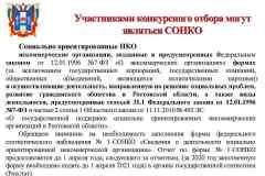 презентация-для-СОНКО_Page5
